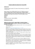 2021.03.17 COMPTE RENDU